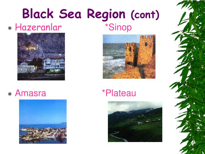 Black Sea Region