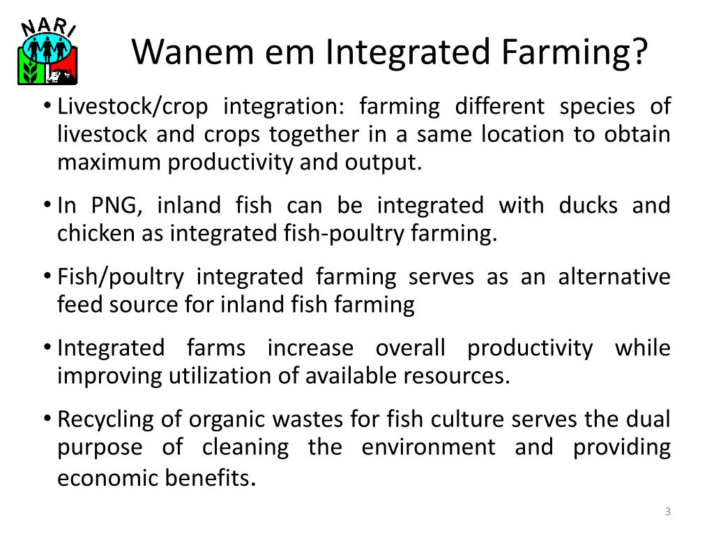 PPT - Integrated Fish and Duck Farming PowerPoint Presentation - ID