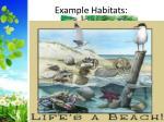 example habitats