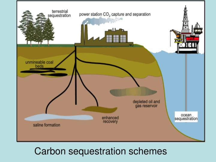 Carbon sequestration schemes