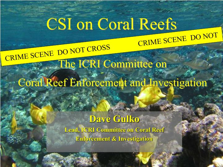 ppt - csi on coral reefs powerpoint presentation - id:6191677, Powerpoint templates