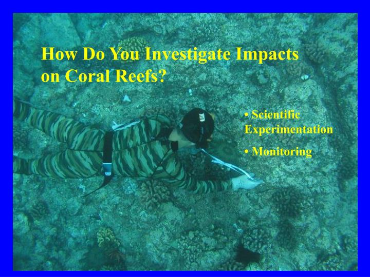 How Do You Investigate Impacts on Coral Reefs?