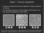 origin 1 texture recognition1