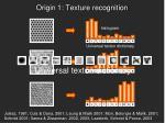 origin 1 texture recognition2