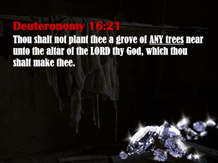Deuteronomy 16:21