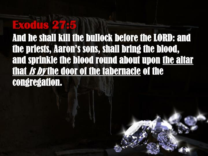 Exodus 27:5