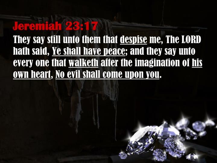 Jeremiah 23:17