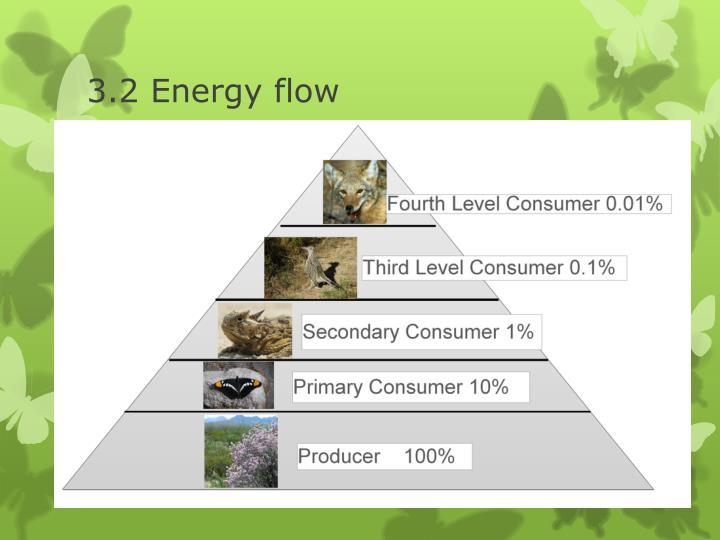 3.2 Energy flow