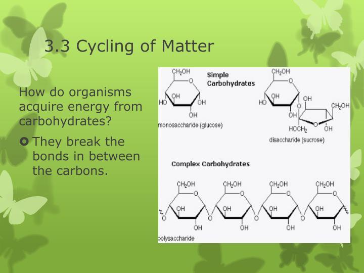 3.3 Cycling of Matter