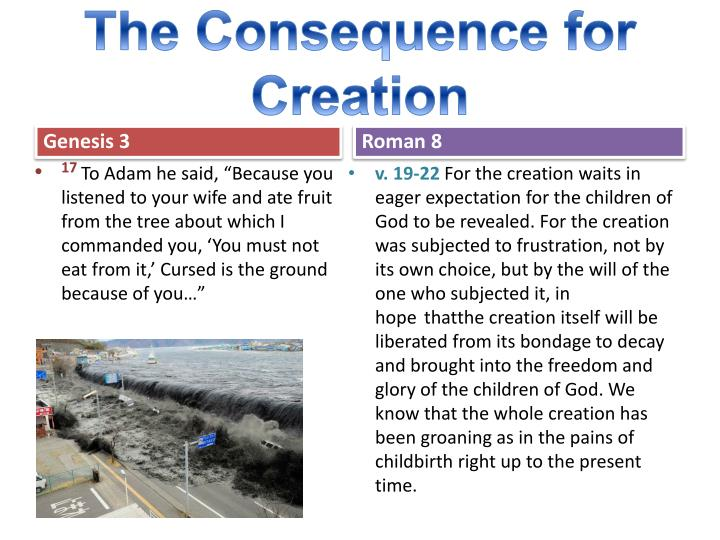The Consequence for Creation