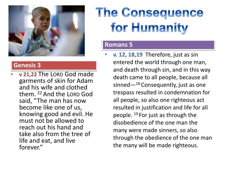 The Consequence for Humanity