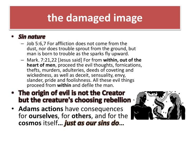 the damaged image
