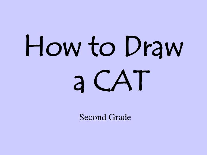 how to draw a cat n.