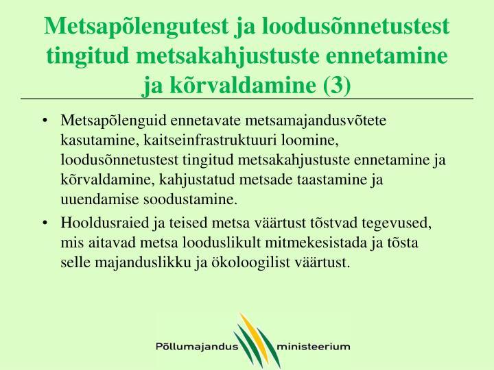 Metsapõlengutest ja loodusõnnetustest tingitud metsakahjustuste ennetamine ja kõrvaldamine (3)
