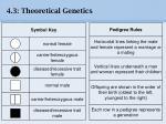 4 3 theoretical genetics35