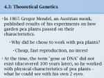 4 3 theoretical genetics4