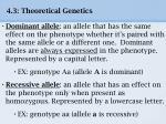 4 3 theoretical genetics8