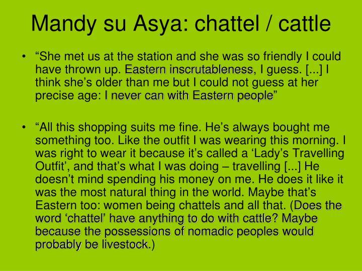 Mandy su Asya: chattel / cattle