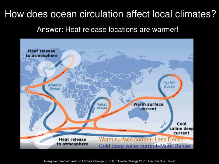 How does ocean circulation affect local climates?
