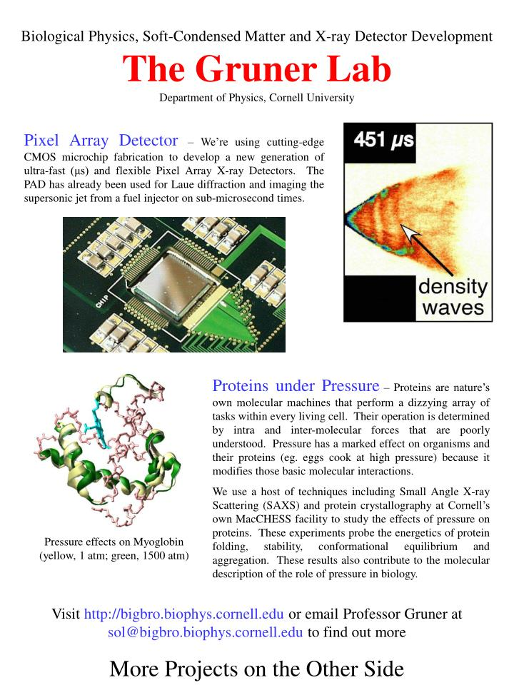 Biological Physics, Soft-Condensed Matter and X-ray Detector Development