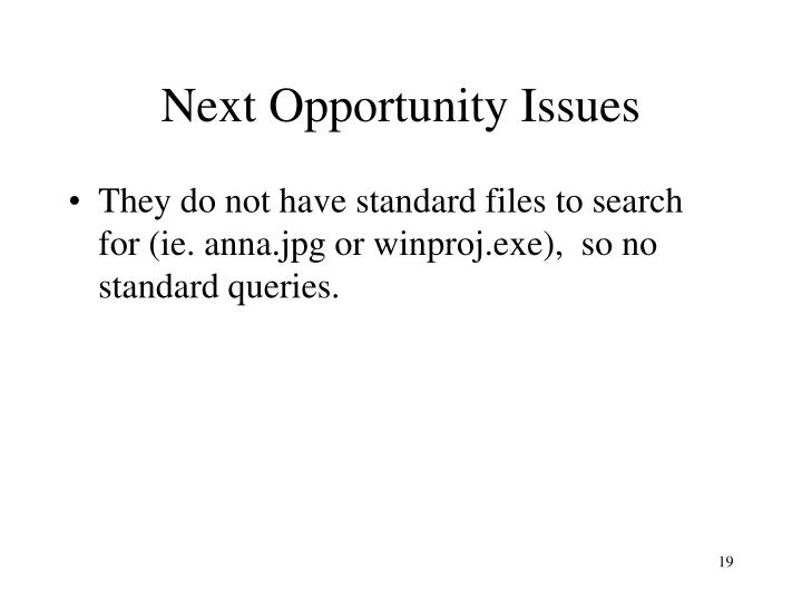 Next Opportunity Issues
