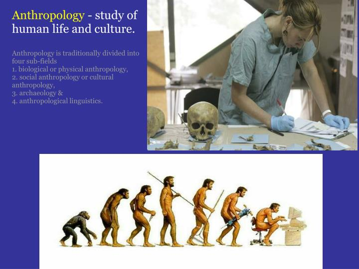vietnam anthropology culture study Through this study of people and its central concern with the concept of culture the department of anthropology [burma], thailand, vietnam) from ancient to.