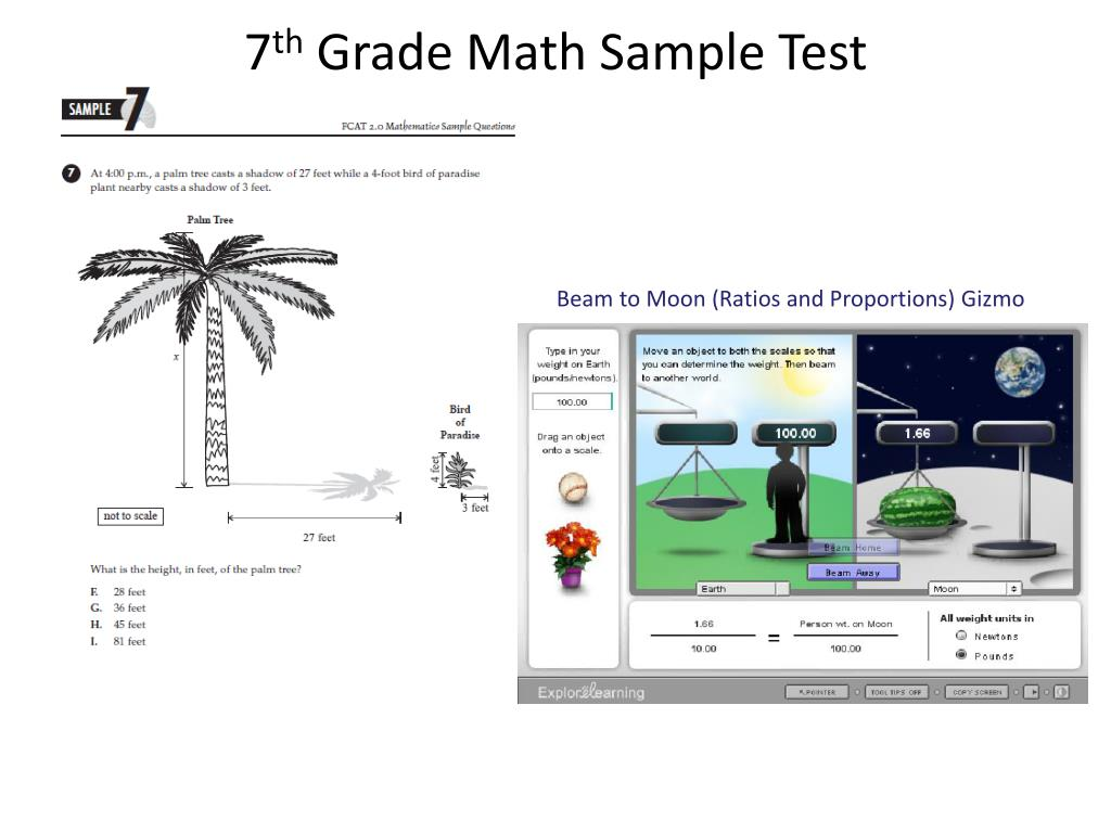 PPT - 8 th Grade Math Sample Test PowerPoint Presentation