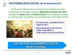 sostenibilidad social de la intervenci n