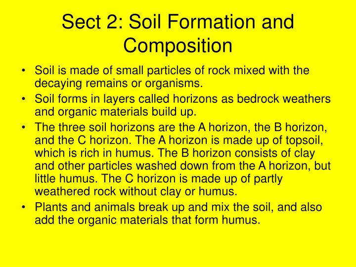 Sect 2: Soil Formation and Composition