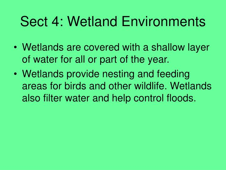 Sect 4: Wetland Environments