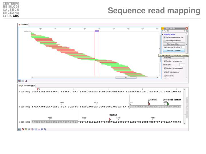 Sequence read mapping