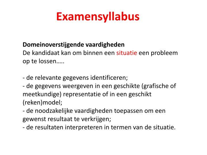Examensyllabus