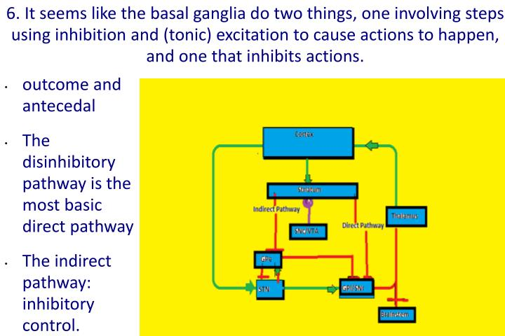 6. It seems like the basal ganglia do two things, one involving steps using inhibition and (tonic) excitation to cause actions to happen, and one that inhibits actions.