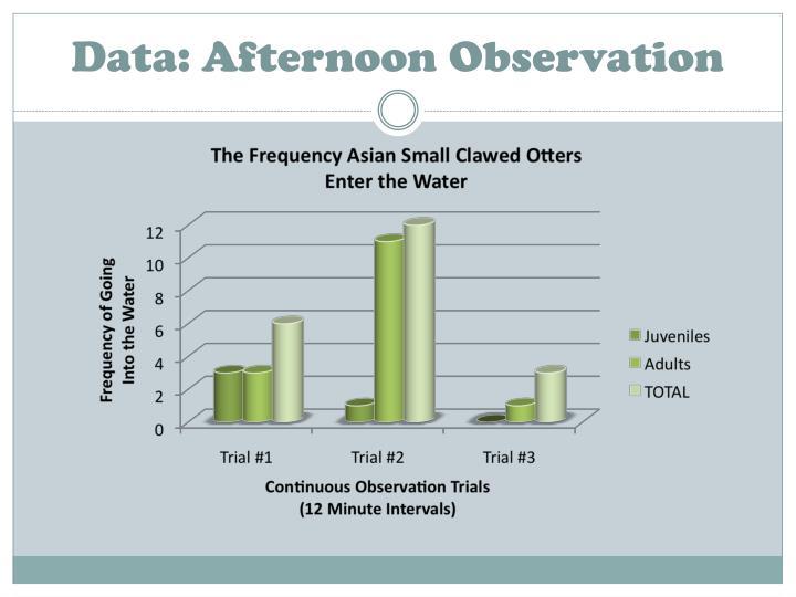 Data: Afternoon Observation
