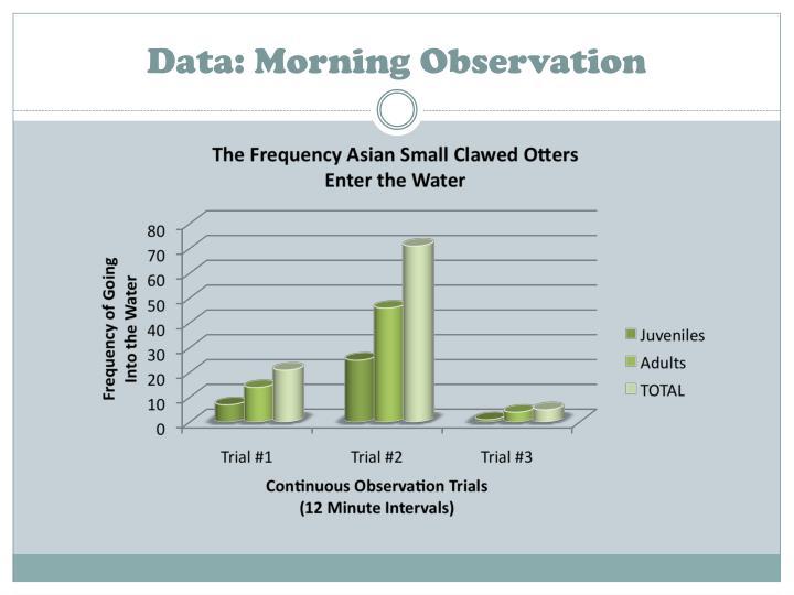 Data: Morning Observation