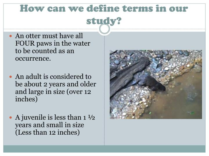 How can we define terms in our study?