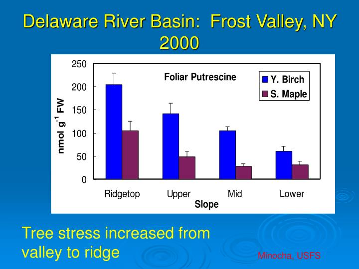 Delaware River Basin:  Frost Valley, NY  2000