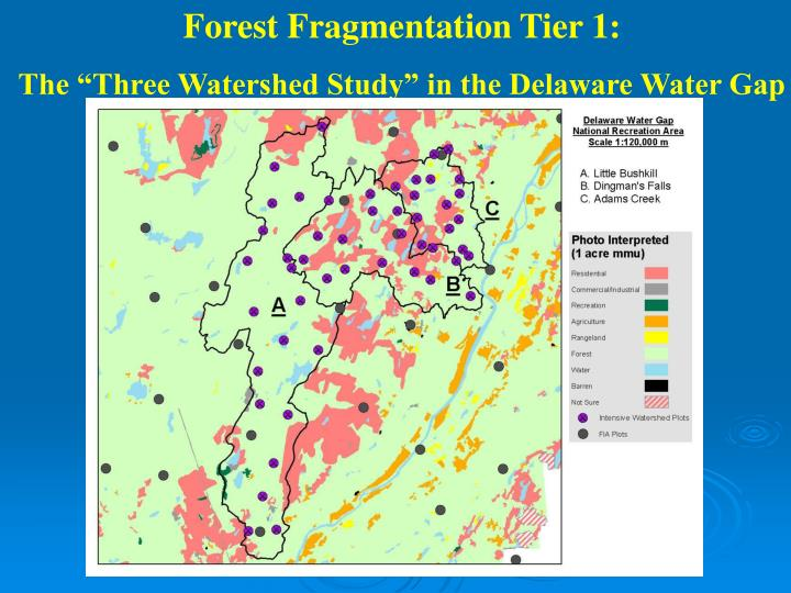 Forest Fragmentation Tier 1: