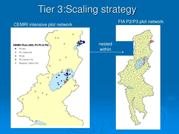 Tier 3:Scaling strategy