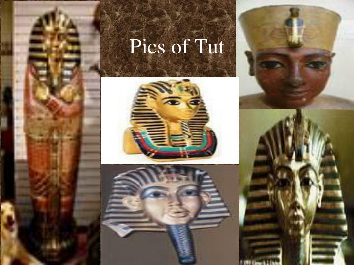 Pics of Tut