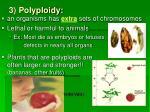 3 polyploidy