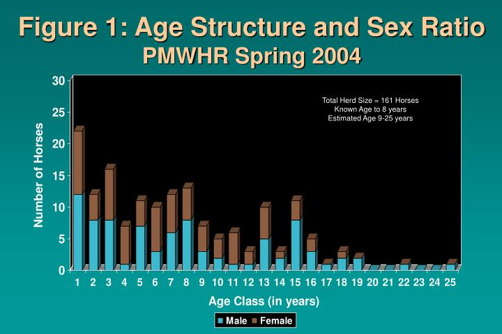 Figure 1: Age Structure and Sex Ratio