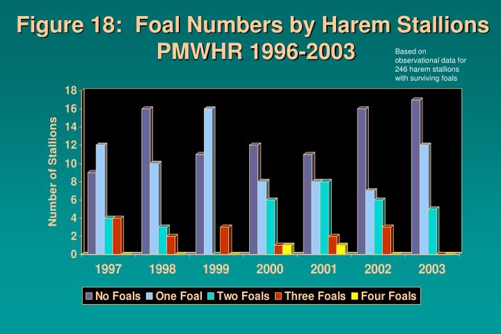 Figure 18:  Foal Numbers by Harem Stallions