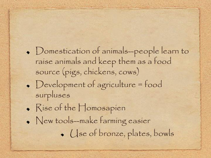 Domestication of animals--people learn to raise animals and keep them as a food source (pigs, chickens, cows)