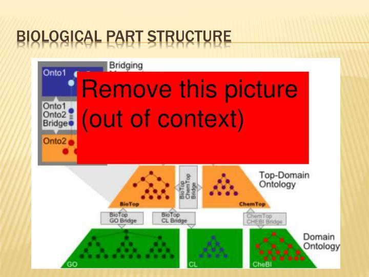 BIOLOGICAL PART STRUCTURE