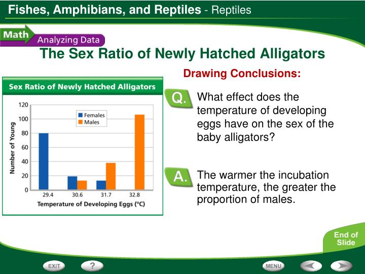 The warmer the incubation temperature, the greater the proportion of males.