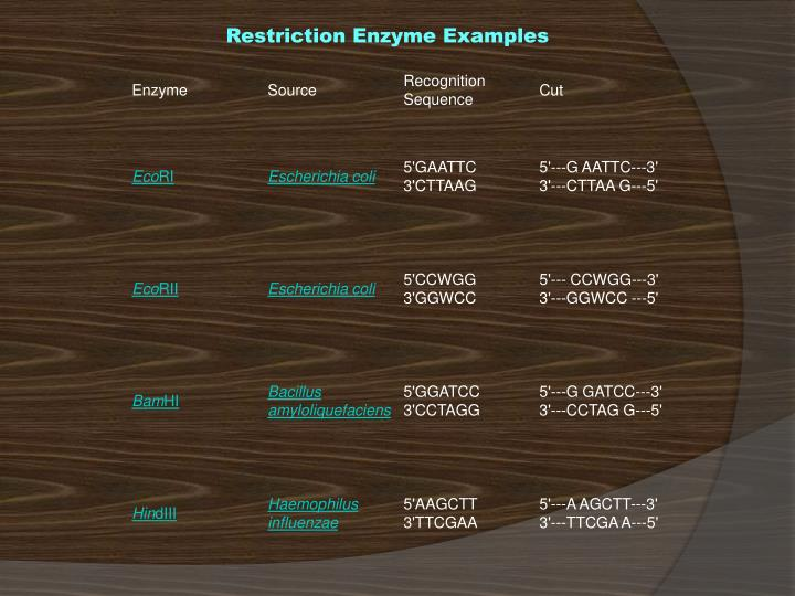 Restriction Enzyme Examples