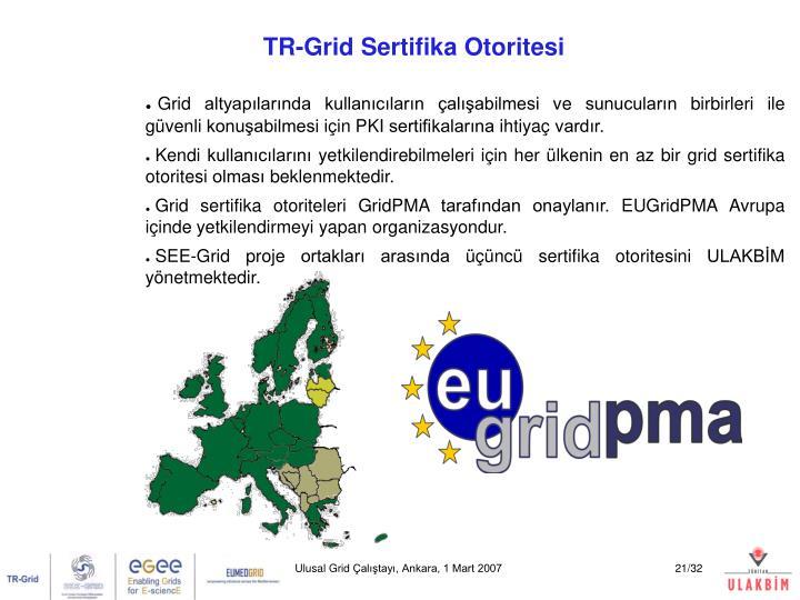 Ulusal Grid