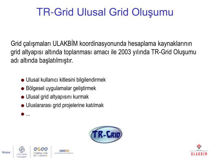 Grid çalışmaları ULAKBİM koordinasyonunda hesaplama kaynaklarının grid altyapısı altında toplanması amacı ile 2003 yılında TR-Grid Oluşumu adı altında başlatılmıştır.