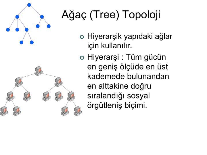 A a tree topoloji1